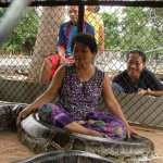 عائلة تايلندية .. وطريقة جديد12