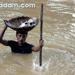 هندي ينقذ جراء قطه من الغرق {2