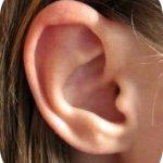 subpage_ear