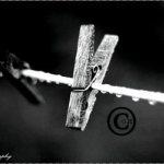 صور متنوعة8