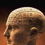 مخ الانسان1