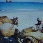 د/ توماس في عمان1