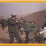 اعدام امهات في الصين2