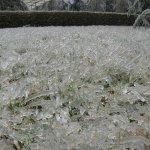 الثلج في الصين7