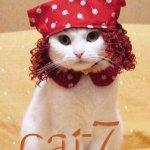 cat7 Size:27.1 Kb Dim: 357 x 470