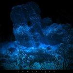قاع البحر