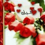 Romance_s77_com-58