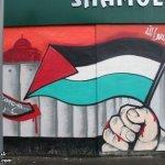القضية الفلسطينية 14