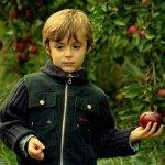 صور اطفال11