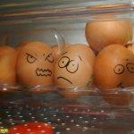 البيض وصور مميزه له 6