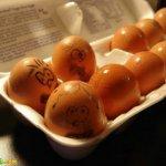 البيض وصور مميزه له 12