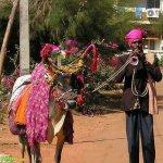 صور عجيبه من الهند5
