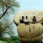 صور عجيبه من الهند12