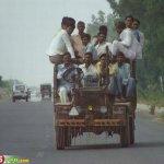 صور عجيبه من الهند15