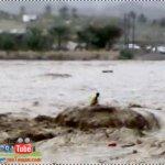 عملية انقاذ شخص من وادي بهلاء4