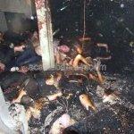 حريق  في نادي ليلي في بانكوك2