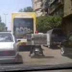 في مصر فقط 7