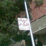 في مصر فقط11