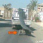 في مصر فقط14