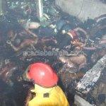 حريق بشع في نادي ليلي في بانك6