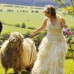 العروس تصنع فستان زفافها 3