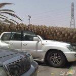 سقوط نخلة على سيارة في الرياض2