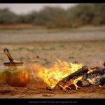 المصور الاحترافي !! خالد الحر12