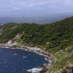 جزيرة الثعابين ( أخطر جزيره ف2