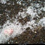 تقرير مصور لأمطار الخير الثلج1