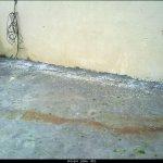 تقرير مصور لأمطار الخير الثلج5