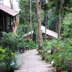 حديقة الفراشات Kuala Lumpur B7