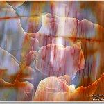 لوحات تشكيلية رائعة من الصخور5
