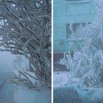 صور لعاصفة ثلجية 6