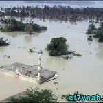 صور فيضانات باكستان -Pakistan4