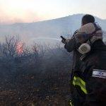 صور .. حرائق اسرائيل وقتلاها 15