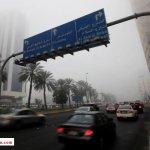 الضباب يعم شوارع أبوظبي3