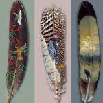 صور مرسومة على ريش الطيور 4