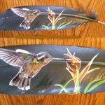 صور مرسومة على ريش الطيور 5