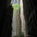 غابة الأحجار في مدغشقر5