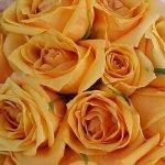 باقة زهور Size:43.10 Kb Dim: 640 x 480