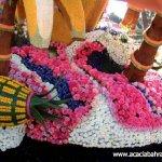مهرجان الورد في جمال الورد5