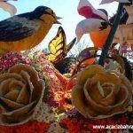 مهرجان الورد في جمال الورد14