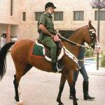 قائد القوات المسلحة Size:525.90 Kb Dim: 1415 x 1260