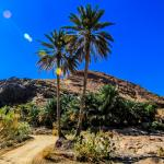 وادي العربيين