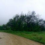 وادي نحيز