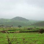 وادي ريثوت