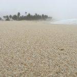 شاطئ الحافة 2016