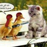 صور مضحكة2