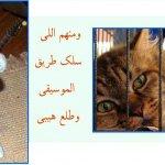 صور مضحكة7