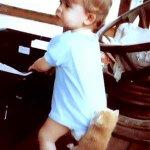 قط و الطفل